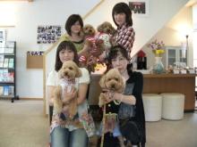 blog_import_54ac917ec1a7d